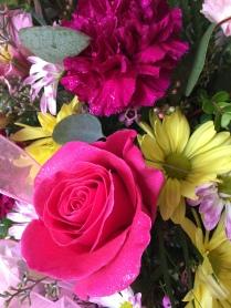 Flowers in Geneseo, IL